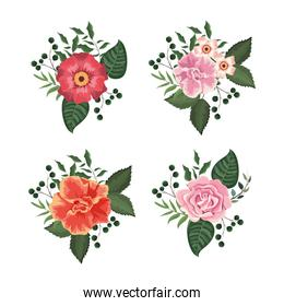 set flowers and roses plants with leaves