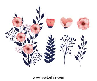 set exotic flowers plants with tropical branches leaves