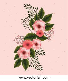 exotic flowers with petals and branches leaves