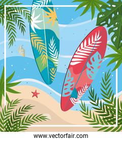 surfboards with starfish and shell with leaves plants in the beach