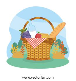 hamper with grapes and milk bottle with apple and bread