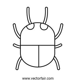 line spider insect animal danger symbol
