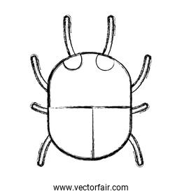 grunge spider insect animal danger symbol
