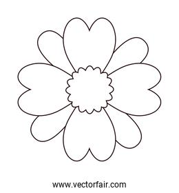 line beautiful flowers with nature petals design