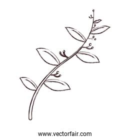 grunge nature leaves with flowers plant branch