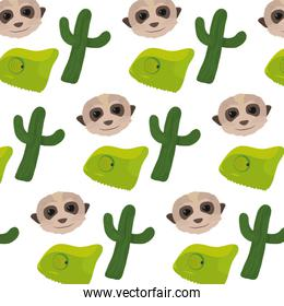 cactus plant with chameleon and meerkat background