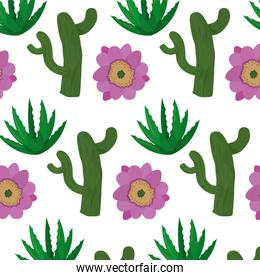 nature cactus with flower and plant background