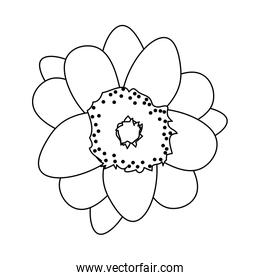 line cute flowers with cute nature petals