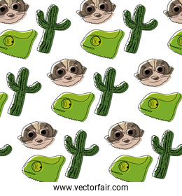moved color cactus plant with chameleon and meerkat background