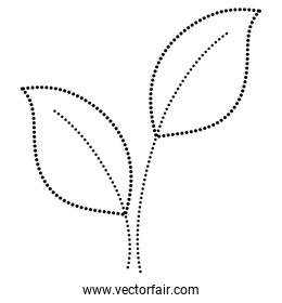 dotted shape exotic leaves nature plant design