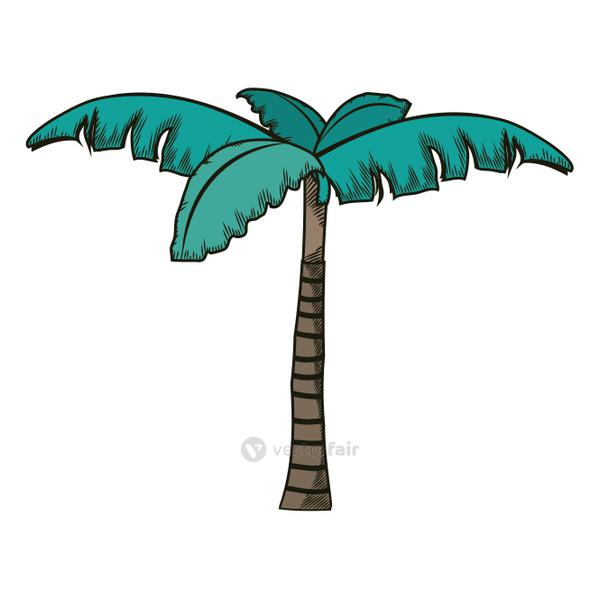 tropical palm tree with natural design