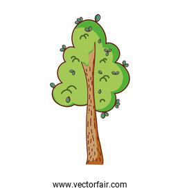 natural tree with leaves design