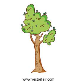 natural tree leaves with branches design