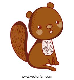 happy beaver seated animal with tail