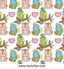 parrots and beaver animals with heart background
