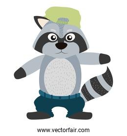 character raccoon animal with cap and pant