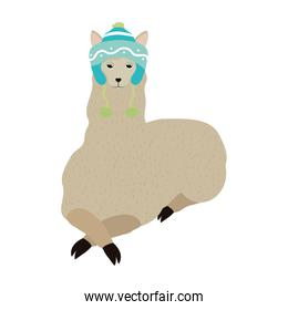 cute sheep animal with winter hat