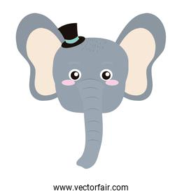 baby elephant head animal with hat
