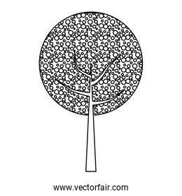 line nature tree with stem and leaves design