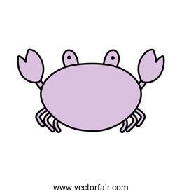 line color nature crab tropical animal of sea
