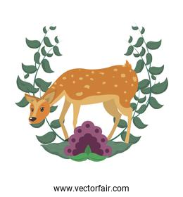 deer wild animal with flower and leaves branches