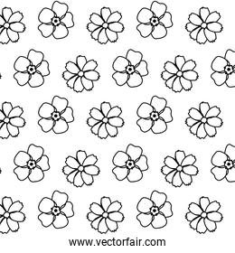 line beautiful flower with nature petals background