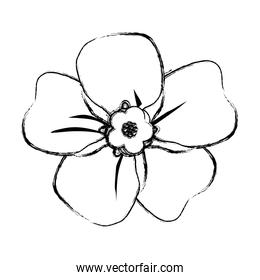 grunge beautiful flower decoration with cute petals