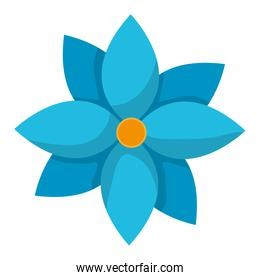 nature flower with nice patals design