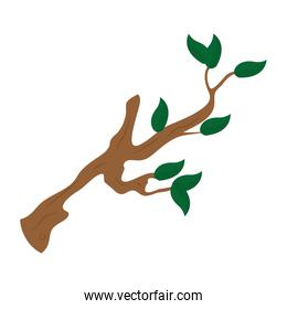 nature tree branch with leaves design