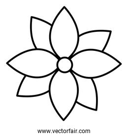 line nature flower with nice patals design