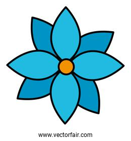 color nature flower with nice patals design