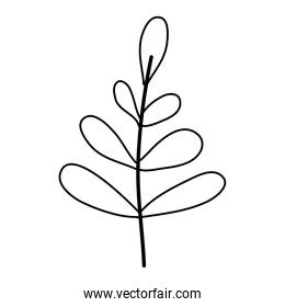 line exotic plant branch leaves style over white