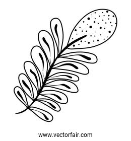 line tropical plant branch exotic leaves style