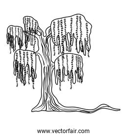line tropical tree with branches leaves style
