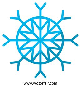 snowflake style in natural winter season