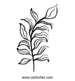 grunge natural branch plant with exotic leaves