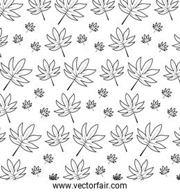 line natural leaf tropical style background