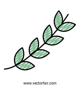 doodle exotic natural leaves style plant