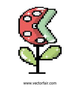 pixel videogame bad plant character