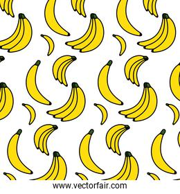color delicious bananas organic fruits background