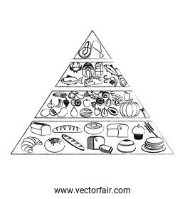 grunge nutritional food pyramid diet products