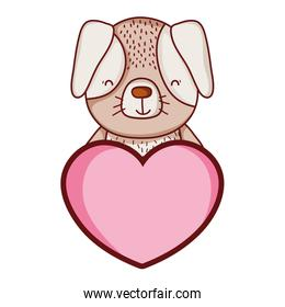 dog cute pet animal with heart