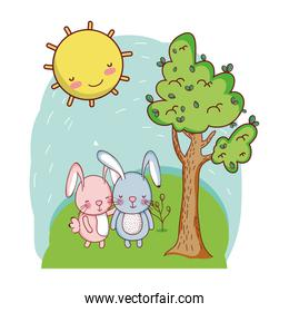 couple rabbit together animal in the landscape
