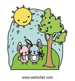 color couple rabbit together animal in the landscape