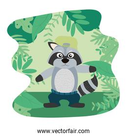 raccoon animal with hat and pant in the landscape