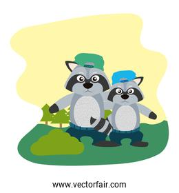 raccon animal with his son with hat and pant