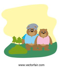 couple bear animal with clothes in the landscape