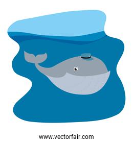 whale animal with hat in the ocean landscape