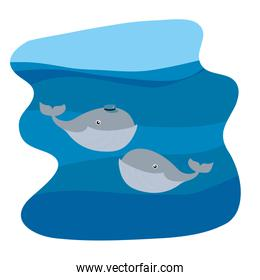 couple whale with hat in the ocean landscape
