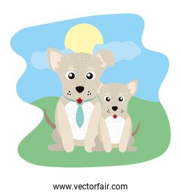 dog animal with tie and his son in the landscape